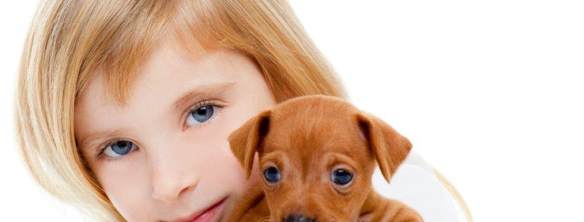 head-lice-holding-dog
